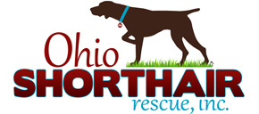 Ohio GSP Rescue (German Shorthaired Pointer)